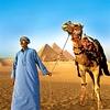 Na izletu k 4.500 let starim piramidam v Gizi se potopite v legendarni svet starega Egipta.