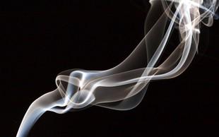 Na vsakih 15 cigaret ena mutacija DNK