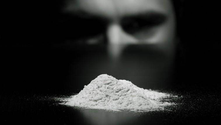 Redki vzamejo drogo za zabavo (foto: Shutterstock.com)