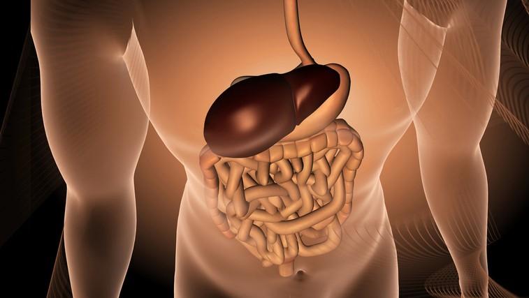 Spoštljivo z jetri! (foto: Shutterstock.com)
