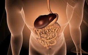 Spoštljivo z jetri!