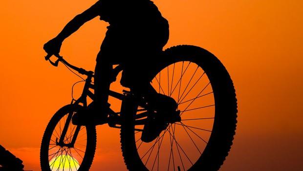 Vas je zamikalo, da bi skrite poti v bližnjem gozdu doživeli še nekoliko drugače, s perspektive kolesarja? (foto: Shutterstock.com)