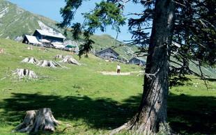 Ideje za izlet v planine