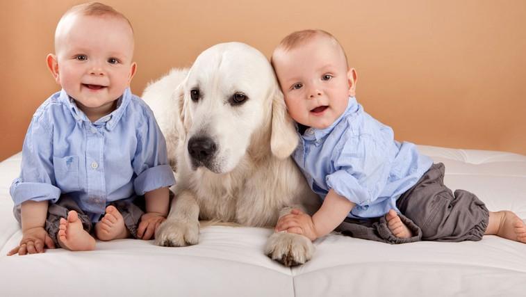 Sobivanje dojenčka in psa (foto: Shutterstock.com)