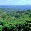 S Ferrarijevega vrta in krožne poti ima obiskovalec lep pogled proti dolini Branice.