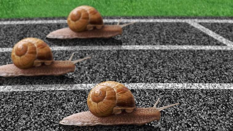 Kako do motivacije? (foto: Shutterstock.com)