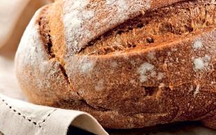 Kruh s kislim testom