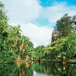 Mauritius - rajski otok (foto: Arhiv revije Moj lepi vrt)