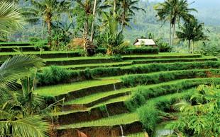 Bali – raj na zemlji