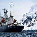 December na Antarktiki (foto: Shutterstock.com)