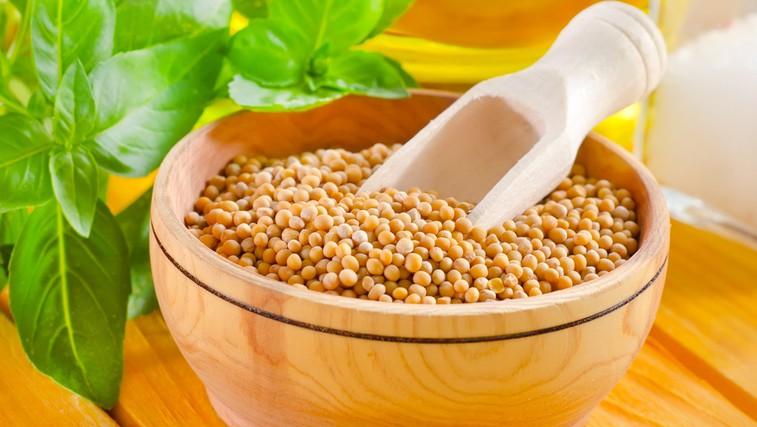 Gorčično seme - majhno seme z velikimi učinki (foto: Shutterstock.com)
