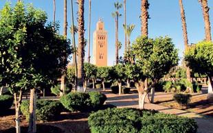 Pozimi prija pisani Maroko