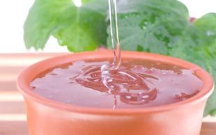 Olje čajevca - naravna pomoč pri okužbah