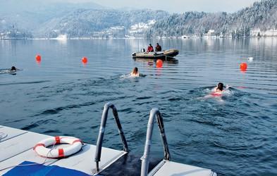Foto: Pokal Bleda v zimskem plavanju
