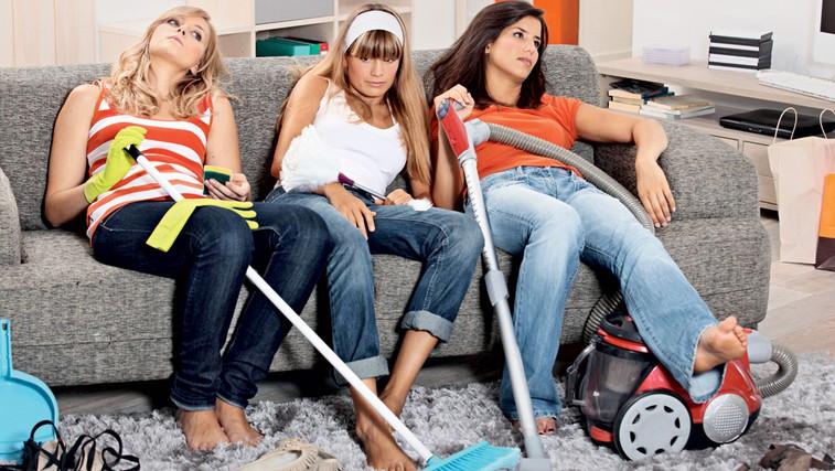 Na kaj morate biti pozorni pri vzdrževanju čistoče (foto: Shutterstock.com)