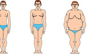 Somatotip - kateri je vaš telesni tip?