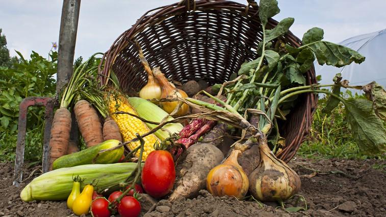 Organsko ali naravno? (foto: Shutterstock.com)