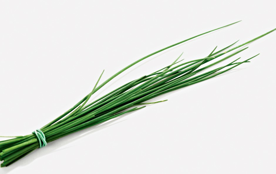 Drobnjak - razkužuje in pospešuje prebavo (foto: Shutterstock)