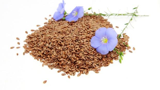 Semena zdravja: lan