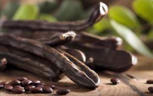 Rožiči - zdrav nadomestek kakava