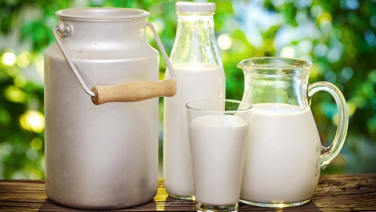 Je surovo mleko res nezdravo? (foto: Shutterstock.com)