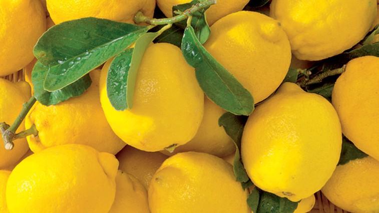 Razstrupljevalna limonada (foto: Shutterstock.com)