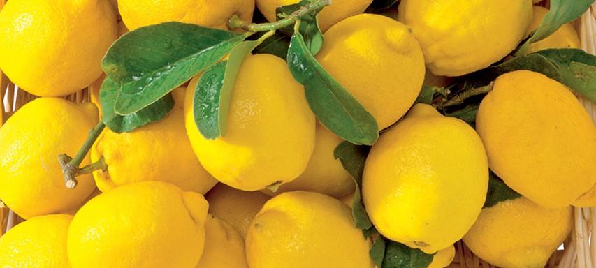 Razstrupljevalna limonada