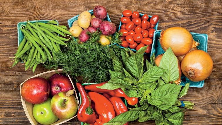 Paleo sistem prehranjevanja (foto: Shutterstock)