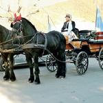 Konjska vprega za kneza in kneginjo. (foto: revija Lisa)