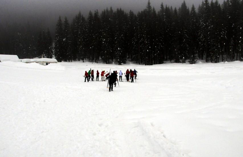 Snega je bilo dovolj.