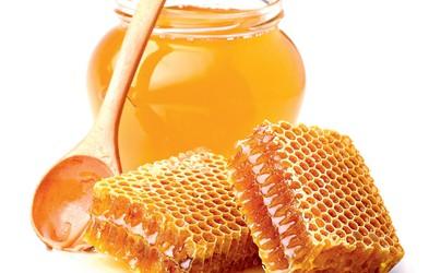 Zdravilna moč medu