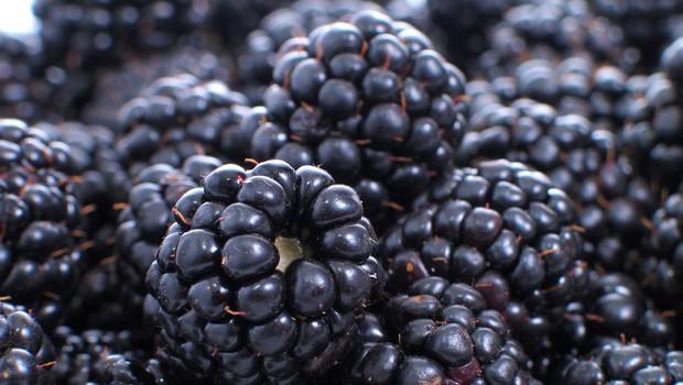 Rastlinski viri omega-3 maščobnih kislin (foto: Shutterstock.com)