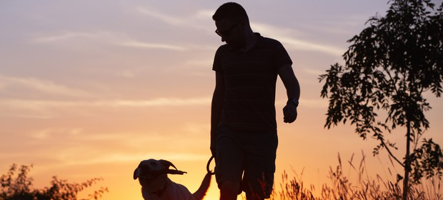 hoja-sprehod-pes