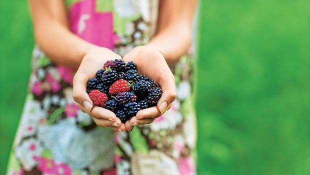 Gozdni sadeži: Naužite se vitaminov ob jesenskem sprehodu (foto: shuterstock)