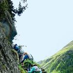 Narodni park  Hohe Tauren: Treking čez narodni park je obenem 'učna' ura iz visokogorskega rastlinja in življa. (foto: Goran Antley)