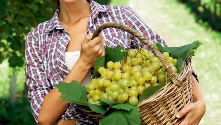 Hitra dieta z grozdjem (foto: shutterstock)