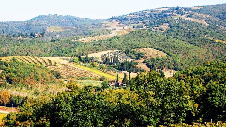 Italija za uživače: Toskanski griči Chianti (foto: Tina Lucu)