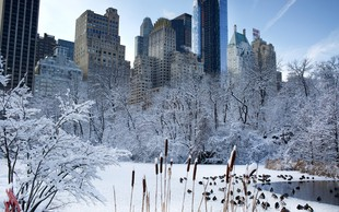 Zasneženi New York je prava urbana pravljica