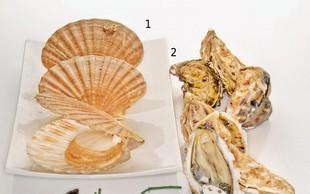 Školjke - morski užitki v lupini