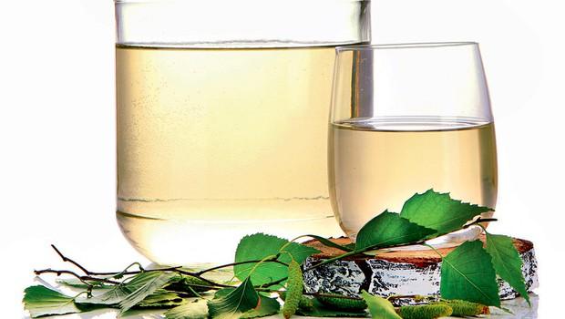 Stisnjen sok iz brezovih listov za pomladno kuro