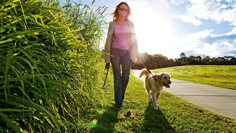 10.000 korakov dnevno - za zdravje in dobro počutje (foto: Shutterstock.com)