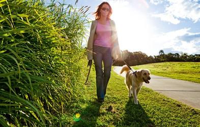 10.000 korakov dnevno - za zdravje in dobro počutje
