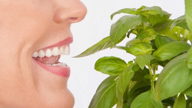 Neustrezna prehrana lahko škoduje vaši zobni sklenini (foto: profimedia)