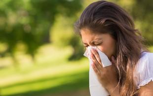 Sezonske alergije - večna nadloga