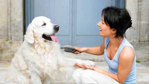 Zakaj imamo tako radi pse? (foto: profimedia)