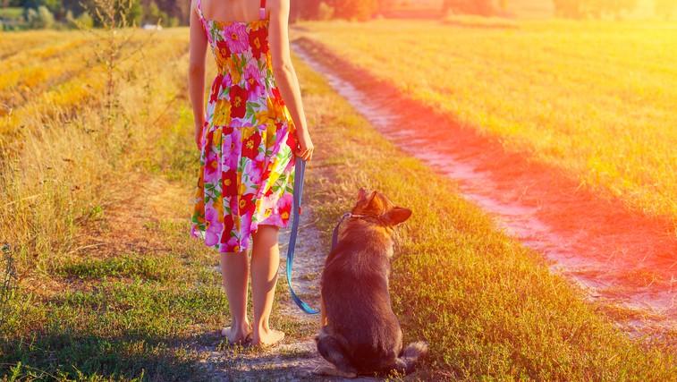 Earthwalk – hoja z vsemi čuti (foto: Shutterstock.com)