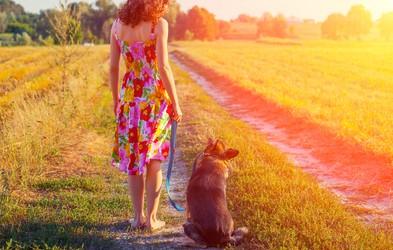 Earthwalk – hoja z vsemi čuti