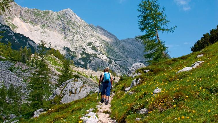 Hitri nasveti za hojo v gore in kaj storiti, če se zgodi nesreča (foto: Shutterstock.com)