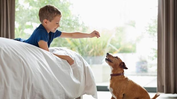 Kako otroka naučiti empatije? (foto: profimedia)