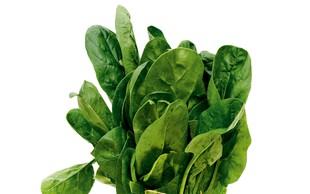 Špinača: zdrava in koristna zelenjava